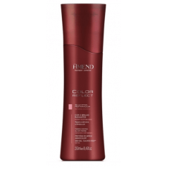 Amend Color Reflect Shampoo 250ml